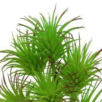 Ramas de cactus 20cm verde claro 3 piezas
