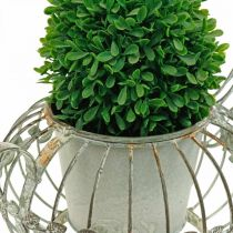Jardinera, cafetera decorativa, maceta de metal para plantar L15.5cm Ø11.8cm