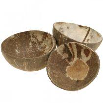 Cuenco decorativo coco natural pulido 6pcs
