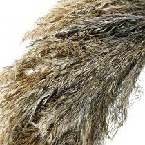 Corona decorativa hierba seca y grano Ø55cm corona seca