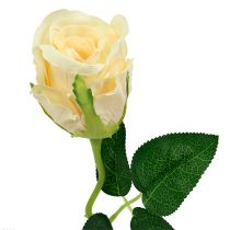 Flores artificiales Rose Cream Ø6cm L50cm 6pcs