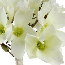 Ramo de magnolia blanco 40cm 5pcs
