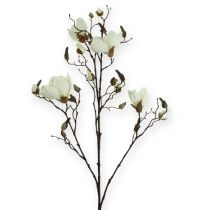 Rama de magnolia blanca 110cm