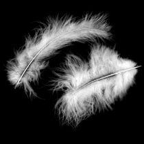 Plumas decorativas, plumas de marabú, adornos de Pascua, plumas para manualidades Blanco 45g