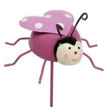 Tapón Ladybug Púrpura Ø7cm L23cm 6pcs