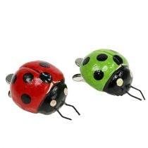 Mariquita con clip 4,5cm rojo, verde 6pcs