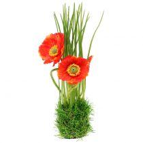 Amapola roja en la hierba 23cm