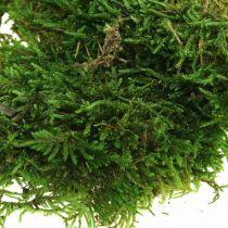 Musgo decorativo para manualidades verde, verde oscuro 100g