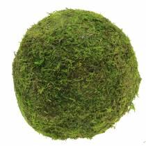 Bola de musgo Ø15cm 3 piezas