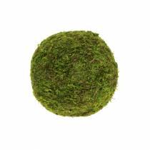 Bola de musgo Ø9cm 6pcs