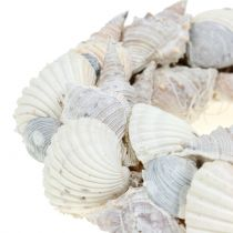 Corona de concha blanca Ø14cm