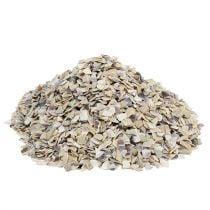 Granulado de concha 2 mm - 3 mm natural 2 kg