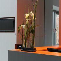 OASIS® Black Table Deco Medi espuma floral 4 piezas
