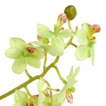 Orquídea 97cm verde claro