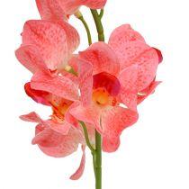 Orquídea Mokara Salmón 50cm 6pcs
