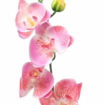 Orquídea Phalaenopsis Rosa Artificial 60cm