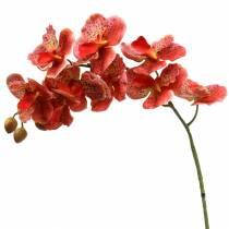 Orquídea artificial Phaelaenopsis roja, naranja H81cm