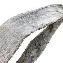 Palm Sing 110cm encalada