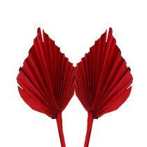 Palmspear mini rojo 100p
