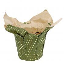 Macetero de papel con estampado verde-blanco Ø9,5cm 12ud