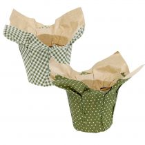 Jardinera de papel estampado verde-blanco Ø11,5cm 8pcs