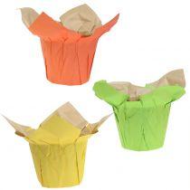 Macetas de papel verde, naranja, amarillo Ø12cm 12pcs