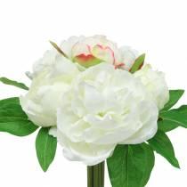 Peony Bunch Blanco / Rosa 27cm 6pcs