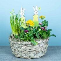 Macetero de heno, cesto decorativo, cesto para plantas, cesto ovalado para flores, juego de 3