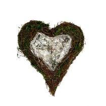 Planta de vid de corazón, musgo 22cm x 25cm H7cm