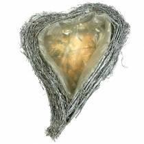 Planta corazón ramas blanqueadas 40cm x 30cm