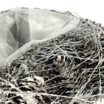 Corazón de planta hecho de conos 17cm x21cm blanqueado 2pcs