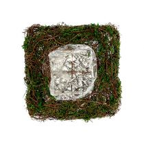 Planta almohada de vid, musgo 22cm x 22cm H7,5cm