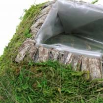 Cojín vegetal musgo, corteza 20cm × 20cm