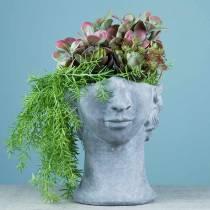 Busto de cabeza de plantación de hormigón para plantar gris A23,5cm