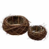 Plant Basket Vine and Branches Nature Ø37 / 28cm Juego de 2 piezas