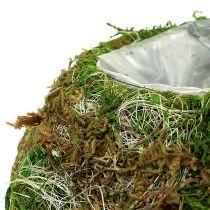 Plato Tazón Moss Bowl Ø18cm 2pcs