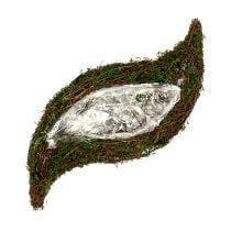 Planta de vid ondulada, musgo 45cm x 18cm H7cm