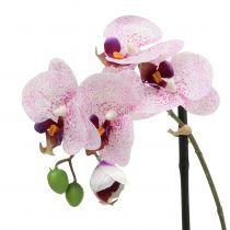Phalaenopsis Artificial Púrpura-Blanco en Copa H38cm