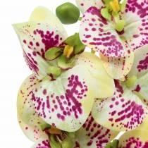 Rama de orquídea artificial Phaelaenopsis Verde Rosa H49cm