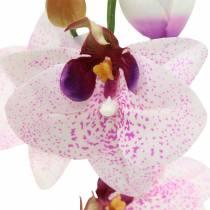 Orquídea artificial phaleanopsis blanca, púrpura 43cm