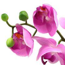 Orquídea Phalaenopsis Rosa 77cm