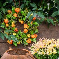 Corona de Physalis naranja artificial, verde Ø28cm decoración de otoño