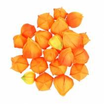 Physalis Naranja Surtido 22 piezas de cálices artificiales