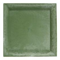 Plato de plástico cuadrado verde 19,5cm x 19,5cm