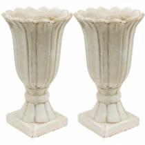 Ánfora decorativa, copa para plantar, copa para plantar tulipanes Ø12cm H25.5cm 2ud