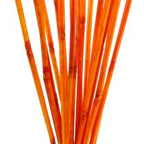 Tallos de ratán naranja 100cm 20pcs.