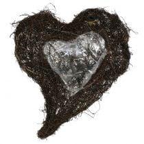 Corazón de vid para plantar naturaleza 30cm x 25cm