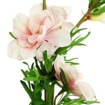 Delphinium Delphinium rosa claro L95cm