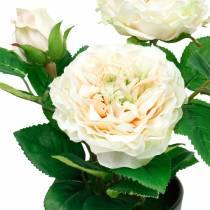 Peonía en maceta, rosa decorativa romántica, flor de seda blanco crema