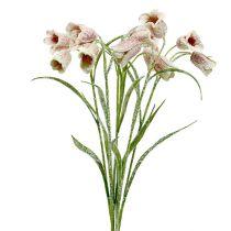 Chessflower blanco-rosa nevado L45cm 6pcs